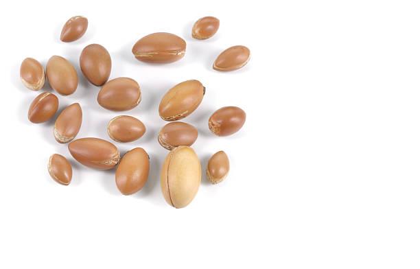Group of argan nuts on a white background. stok fotoğrafı