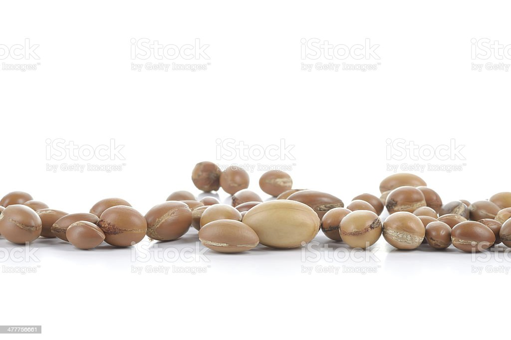 Group of argan nuts on a white background. stock photo