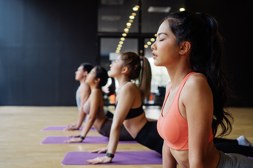 Group of Asian fitness people doing yoga upward facing dog pose on mats at yoga studio. Young women and man exercising at fitness center