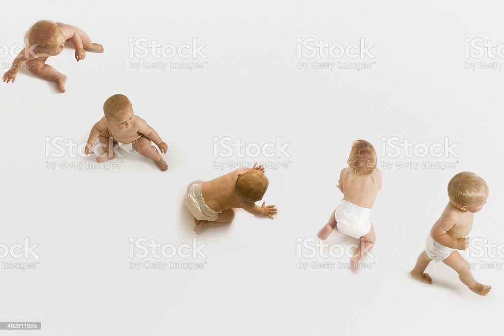 Group Of Babies stock photo