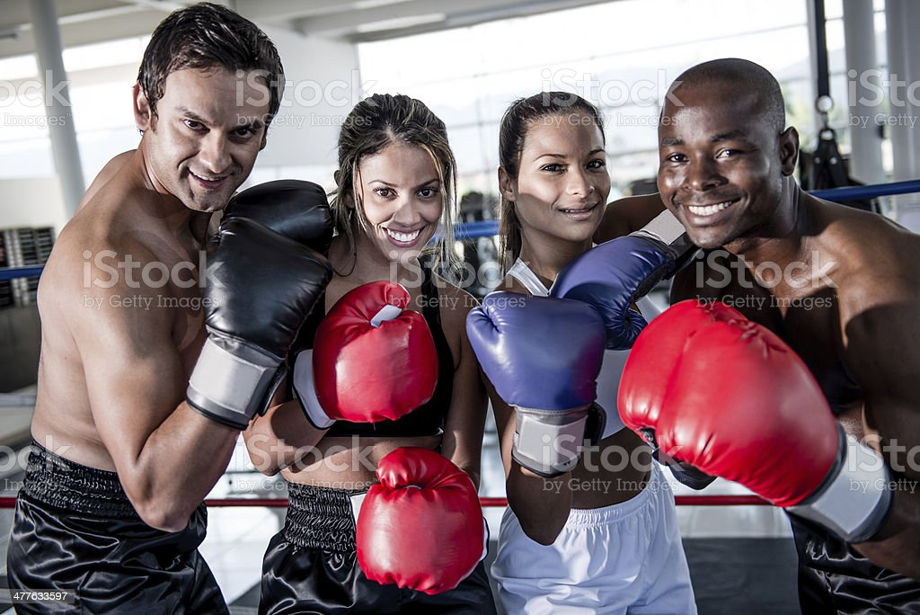 Group of boxers stock photo
