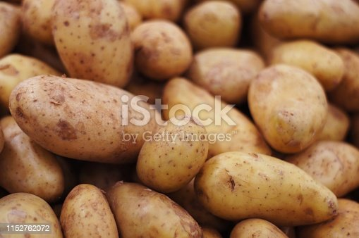 isolated potato on white