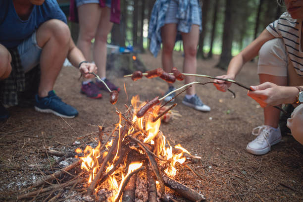 Group of campers cooking sausages over a campfire Cheerful hiking group enjoying their day in a mountain forest, camping. log fire stock pictures, royalty-free photos & images