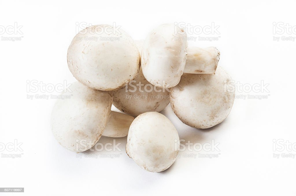 Group of champignon mushrooms isolated on white stock photo