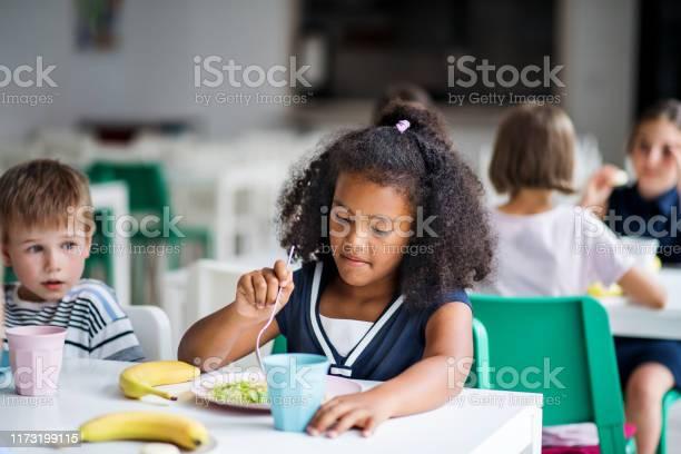 Group of cheerful small school kids in canteen eating lunch picture id1173199115?b=1&k=6&m=1173199115&s=612x612&h=xttodhlv4z5zjplkt 7pi6lsn2jznzmrlpmblpq6ug8=