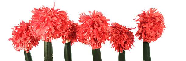 group of cheerleaders - pompon stockfoto's en -beelden