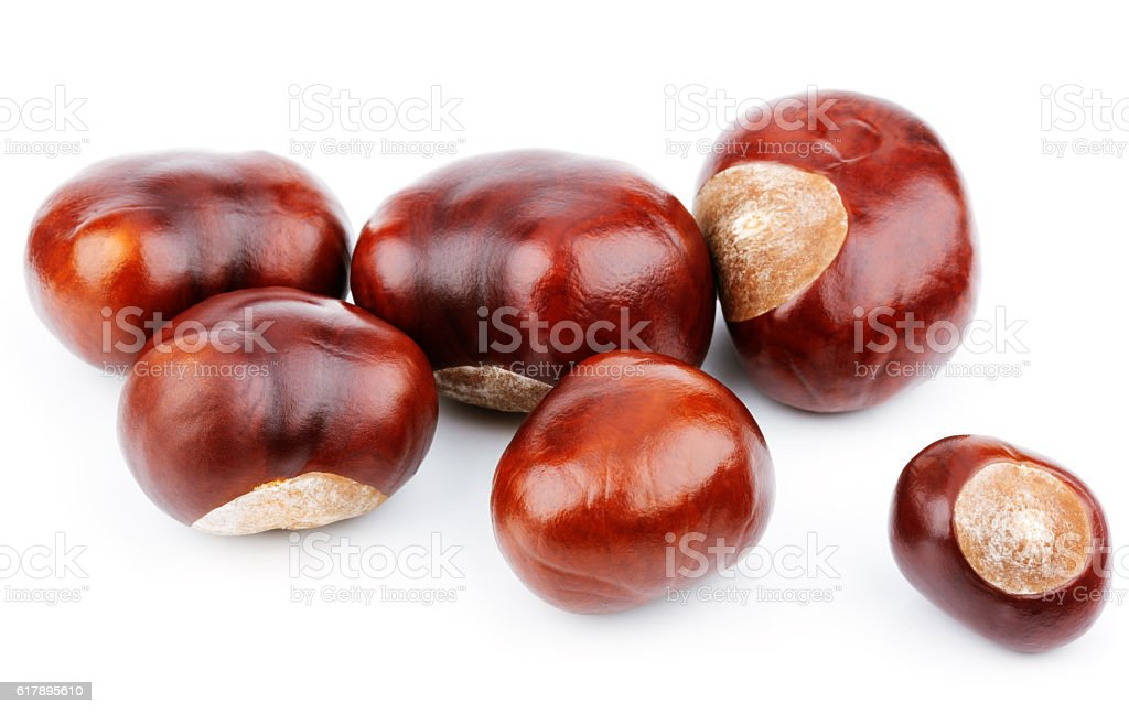 Group of chestnuts on white stock photo