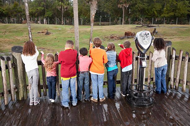 gruppe von kindern in den zoo - vorschulzoothema stock-fotos und bilder