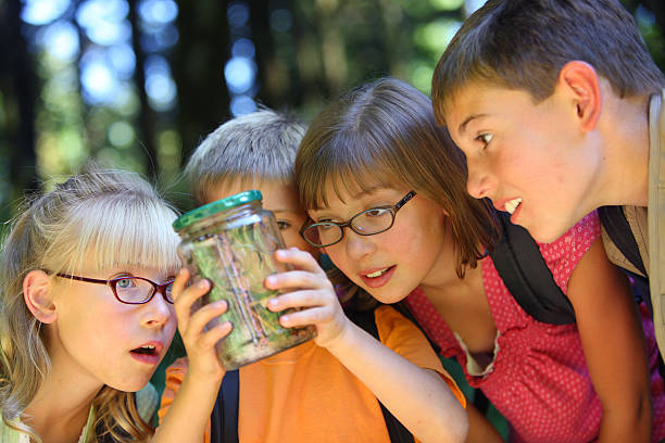 Group of children looking at bug in jar stock photo