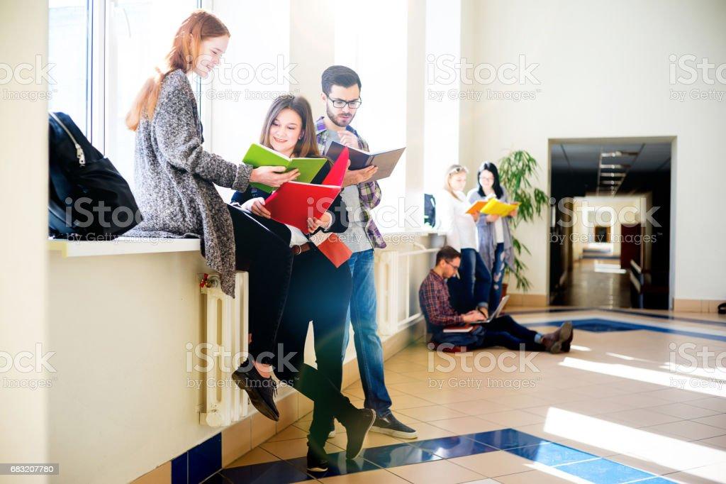 Group of college students ロイヤリティフリーストックフォト