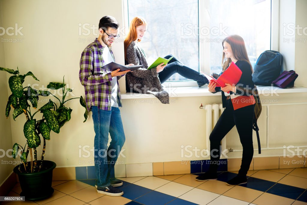 Group of college students foto de stock royalty-free