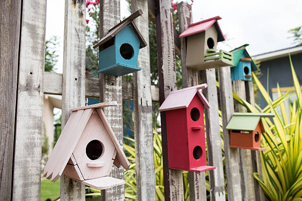 group of colorful wooden style birdhouse in garden – Foto