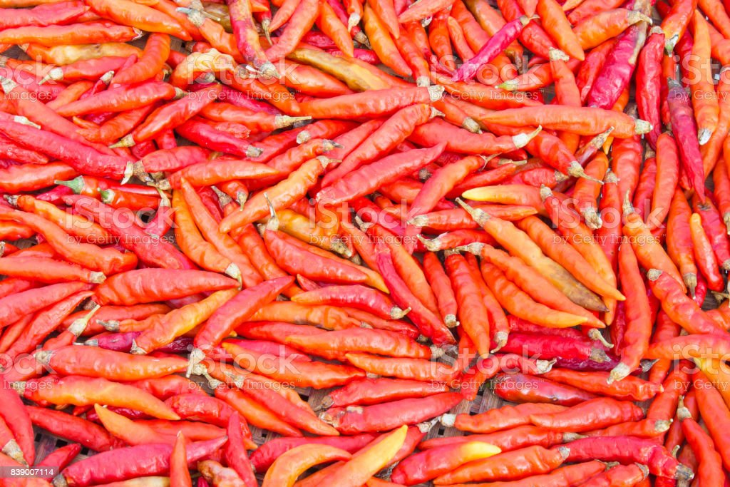 Group of Dried Chili stock photo