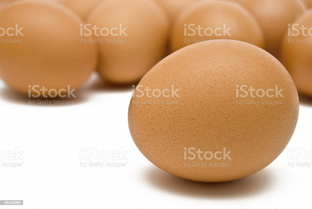 Group of eggs royalty-free stock photo