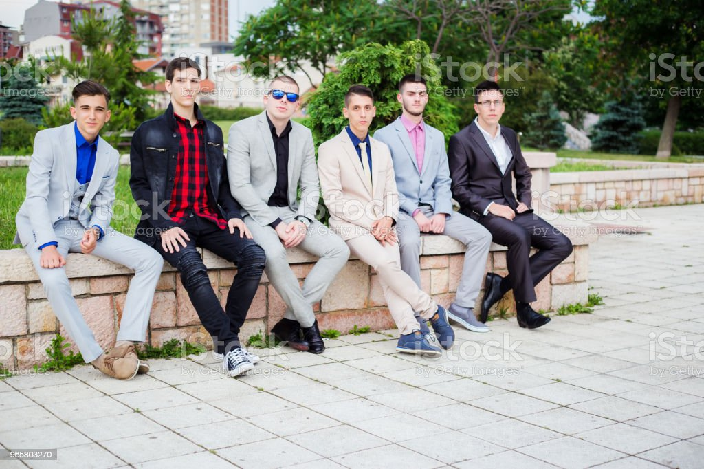 groep van elegantie tienerjongens - Royalty-free 18-19 jaar Stockfoto