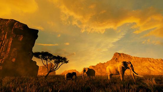 istock Group of elephants in Africa 1177644183