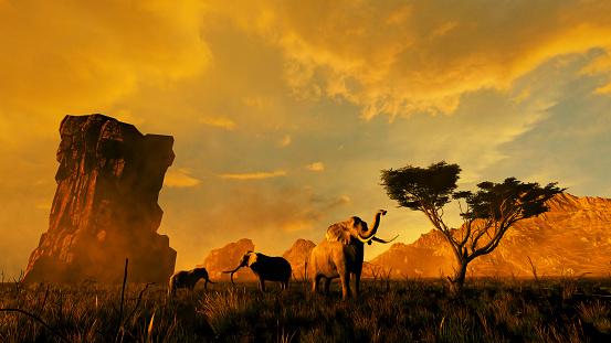 istock Group of elephants in Africa 1177644300