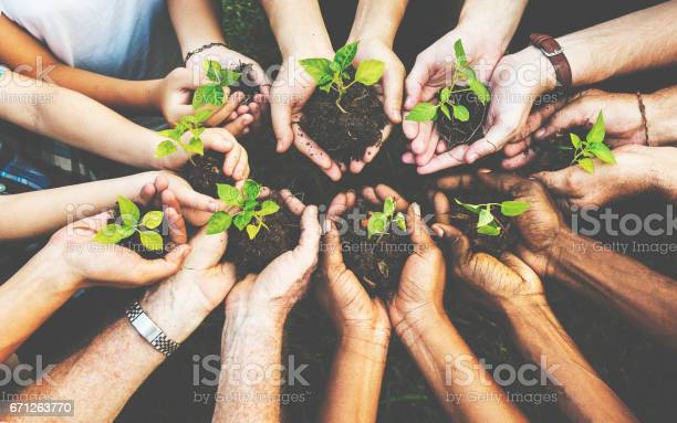 Group of environmental conservation people hands planting in aerial picture id671263770?b=1&k=6&m=671263770&s=612x612&h=b2uvildsaf4l48stz6wv v70xncjxtew6essmczilwo=
