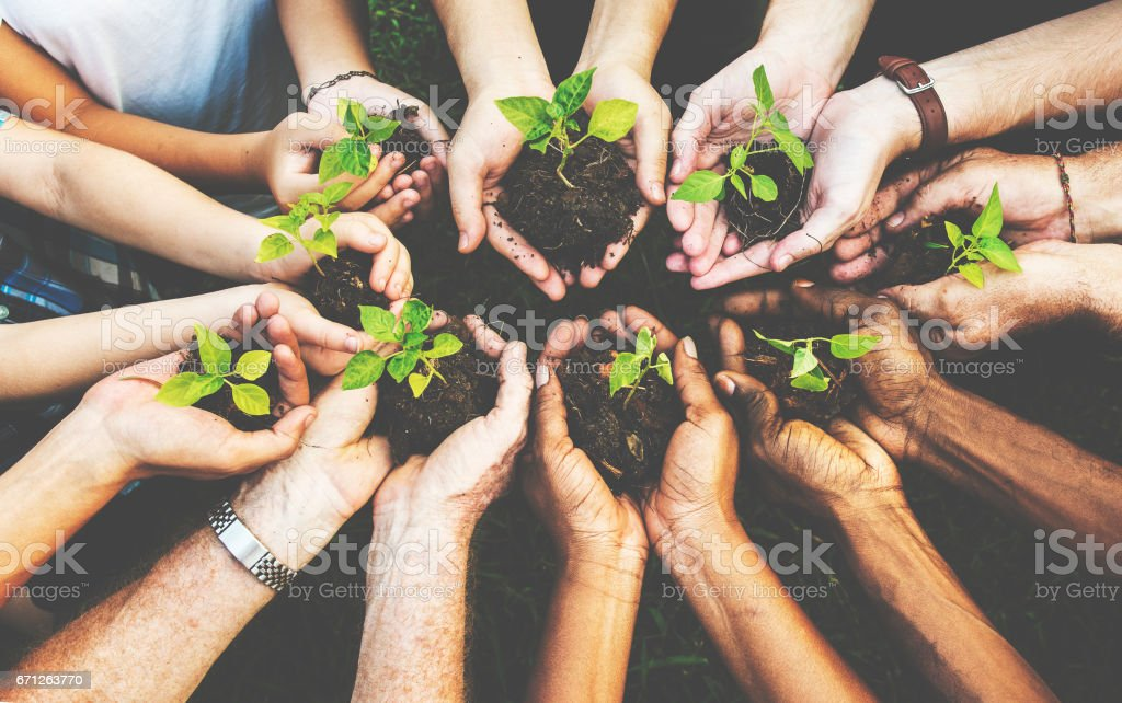 Group of environmental conservation people hands planting in aerial view stock photo