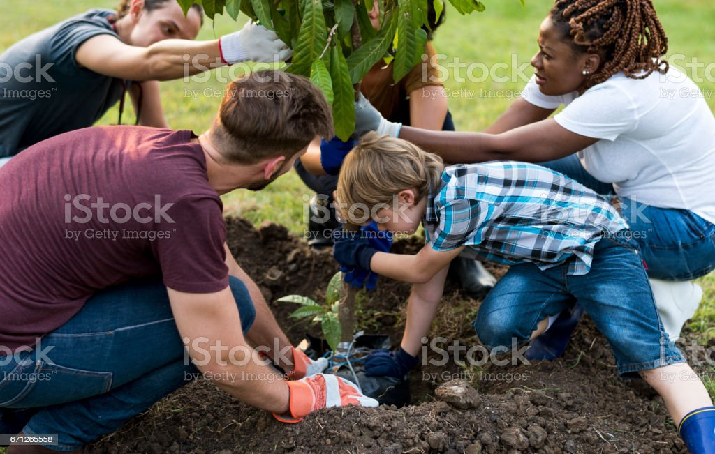 Group of environmental conservation people planting together stock photo
