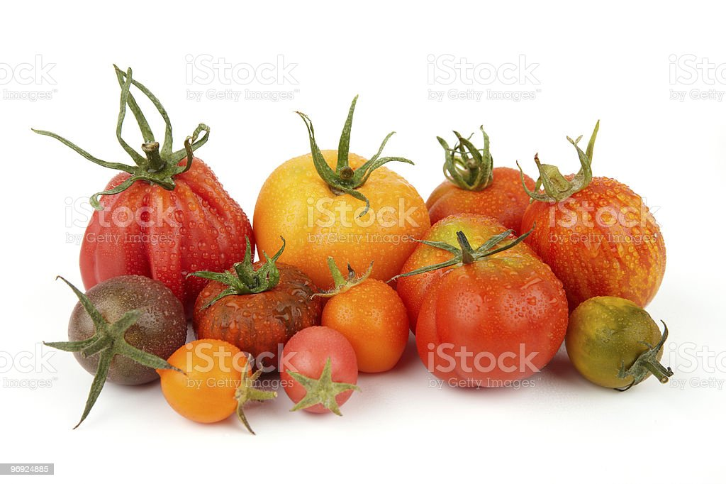 Group Of Exotic Tomatoes (XXXL) royalty-free stock photo