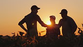 A group of farmers in the field, shaking hands. Family Agribusiness. Team work in agribusiness.