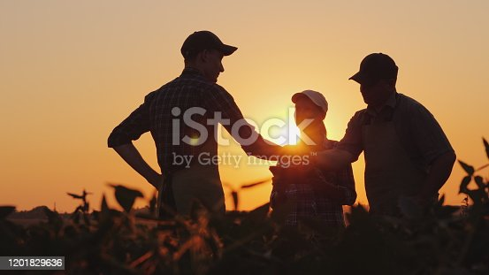 istock A group of farmers in the field, shaking hands. Family Agribusiness 1201829636