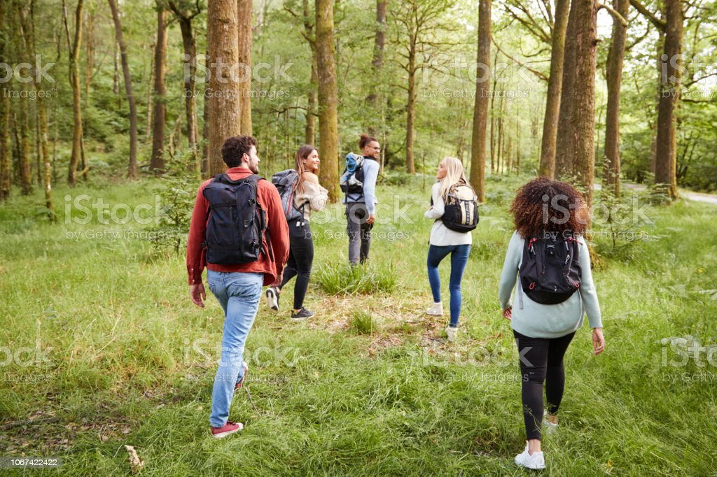 A group of five young adult friends talk while walking in a forest...
