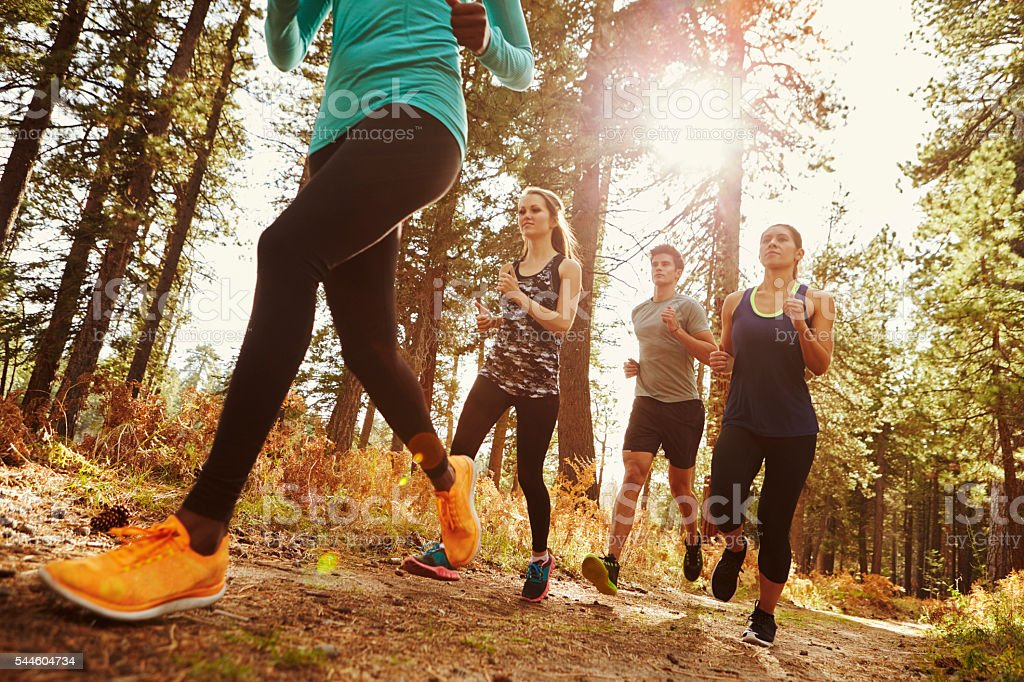 Group of four adults running in a forest, low angle stock photo