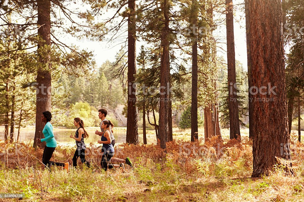 Group of four young adult friends running in a forest stock photo