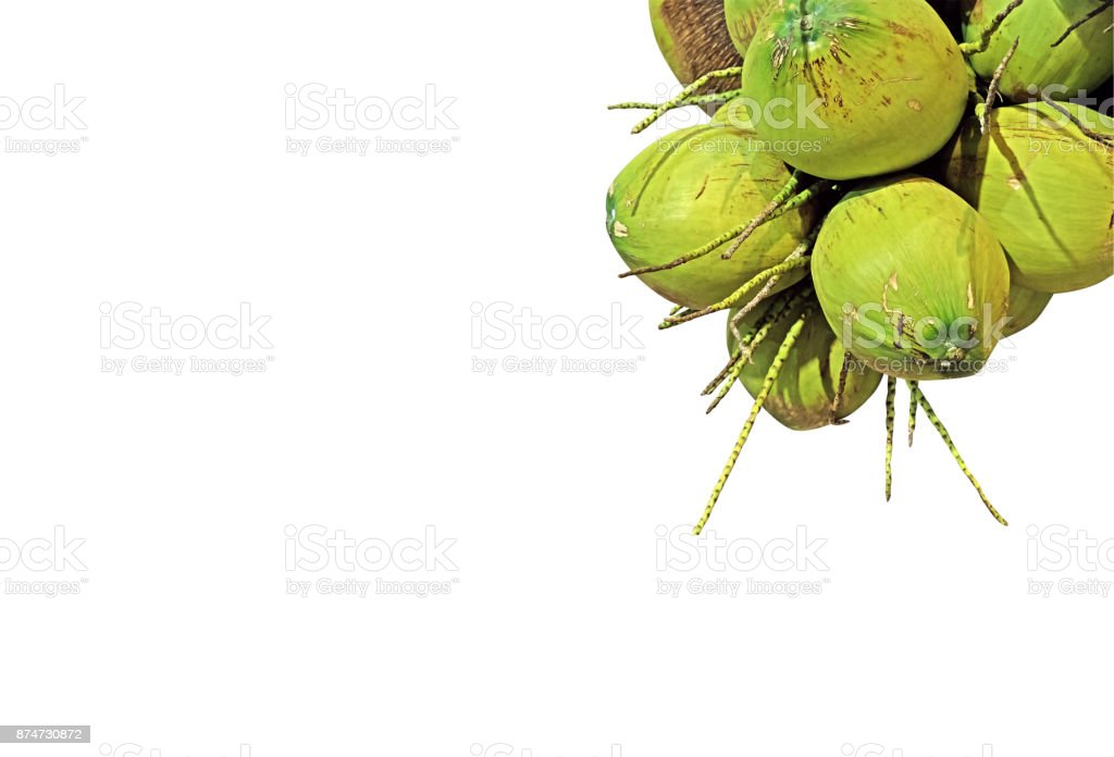 Group of Fresh Coconut on White Background, Clipping Path stock photo