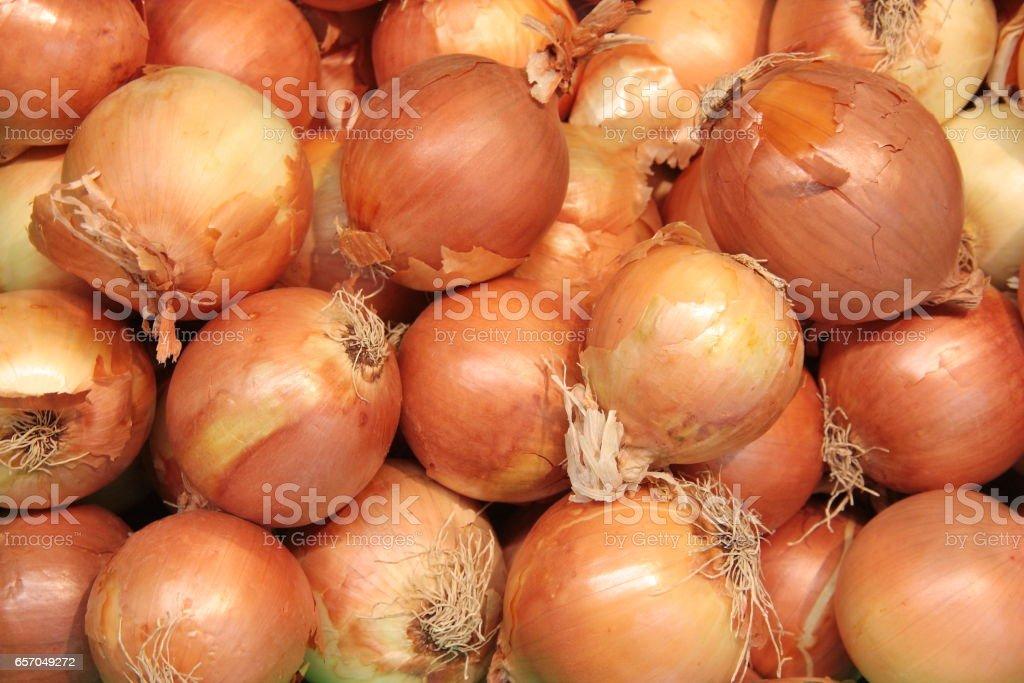 Group of fresh unpeeled onion bulbs stock photo