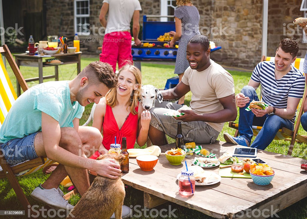 Group of Friends at a BBQ stock photo