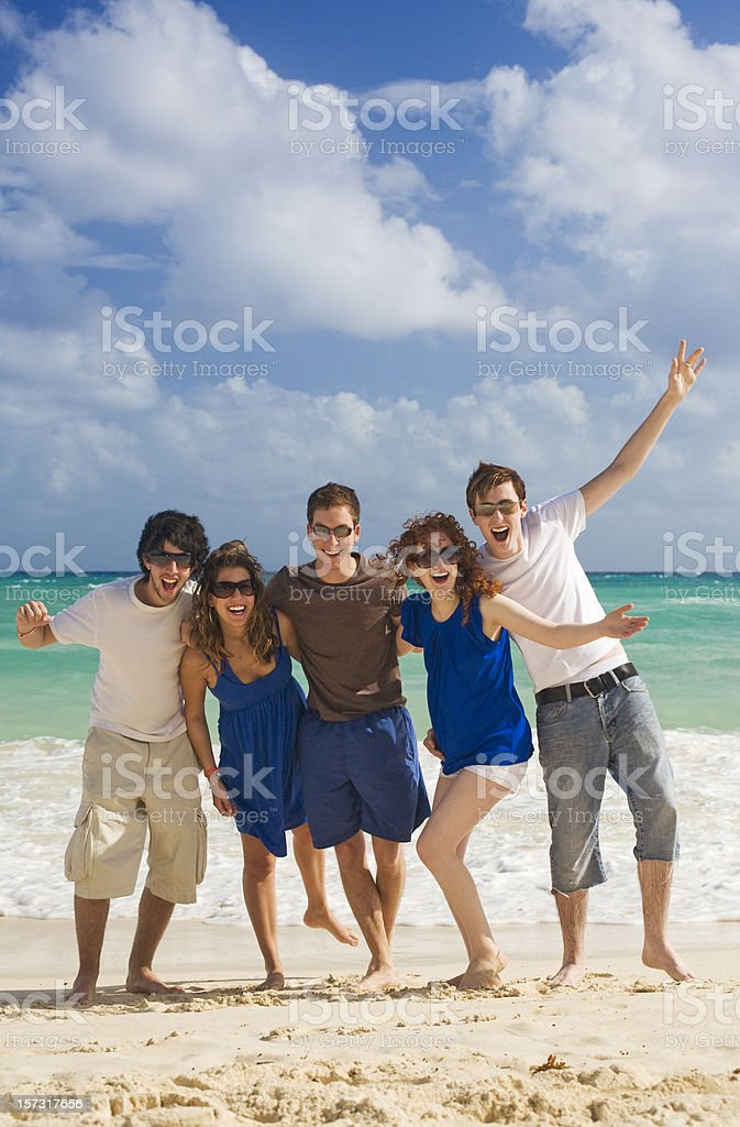 Group of Friends at the Beach royalty-free stock photo
