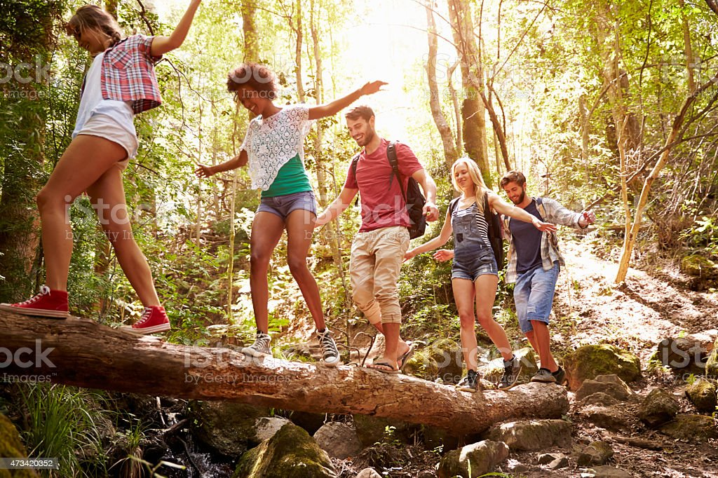 Group of friends crossing a tree trunk bridge in the forest stock photo