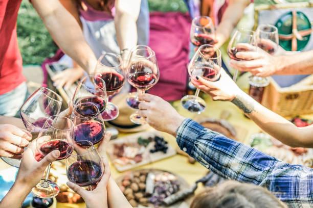 Grupo de amigos disfrutando de picnic mientras beber vino tinto y comer bocado aperitivo al aire libre - jóvenes animando y divirtiendo juntos - se centran en la parte inferior derecha las manos gafas - filtro Vintage - foto de stock