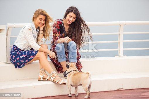 Pug, Dog, Pet, Dubai, Travel, Friendship - Friends with their pug enjoying their weekend on a deck near waterfront