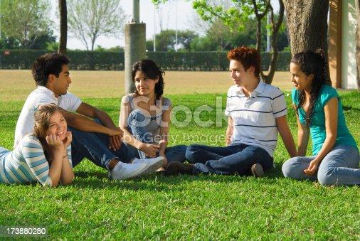 862201618 istock photo Group of friends having fun (series  V) 173880280