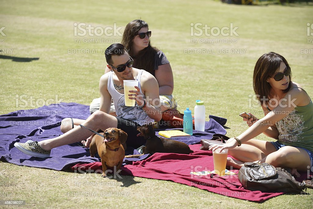 Group of friends relax at a park stock photo