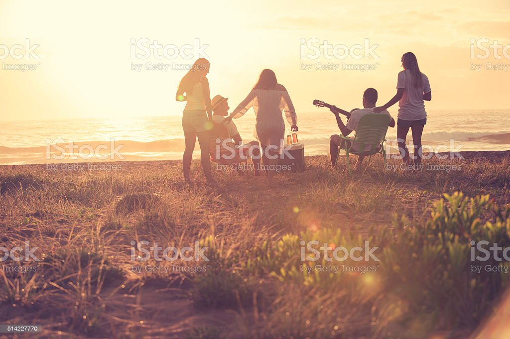 Group of friends relaxing at the beach. stock photo