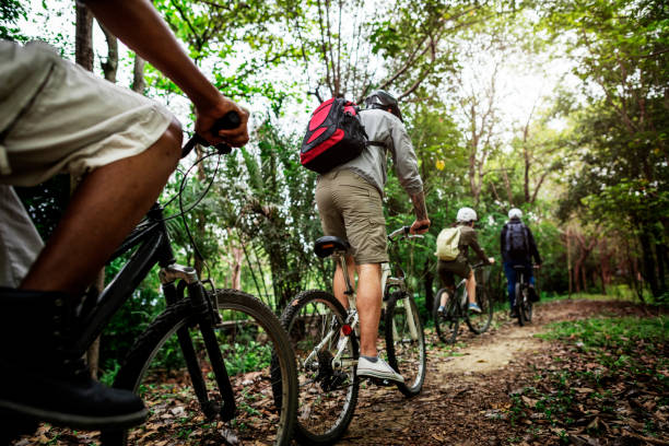 group of friends ride mountain bike in the forest together - mountain bike stock pictures, royalty-free photos & images