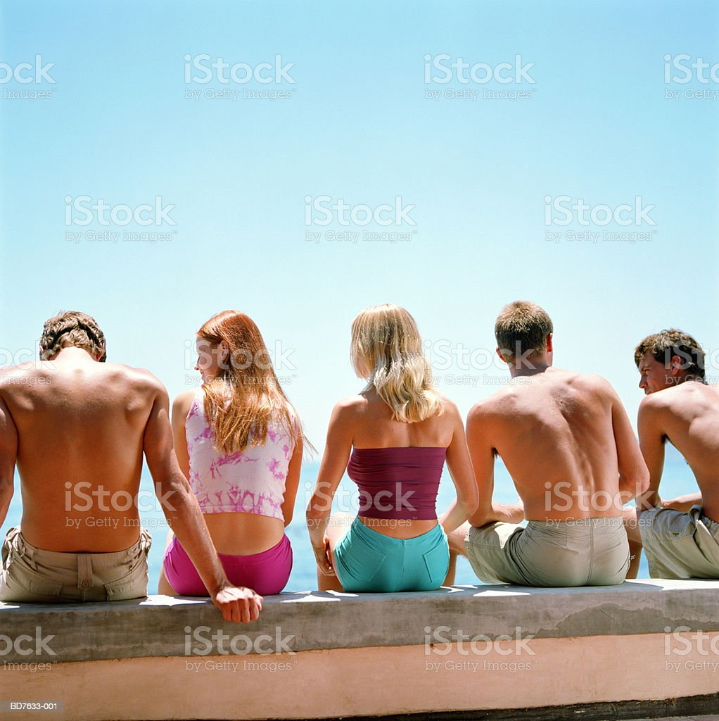 Group of friends sitting by sea, rear view royalty-free 스톡 사진