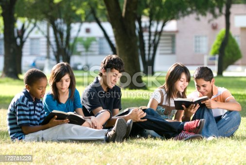 istock Group of friends studying together 172781229
