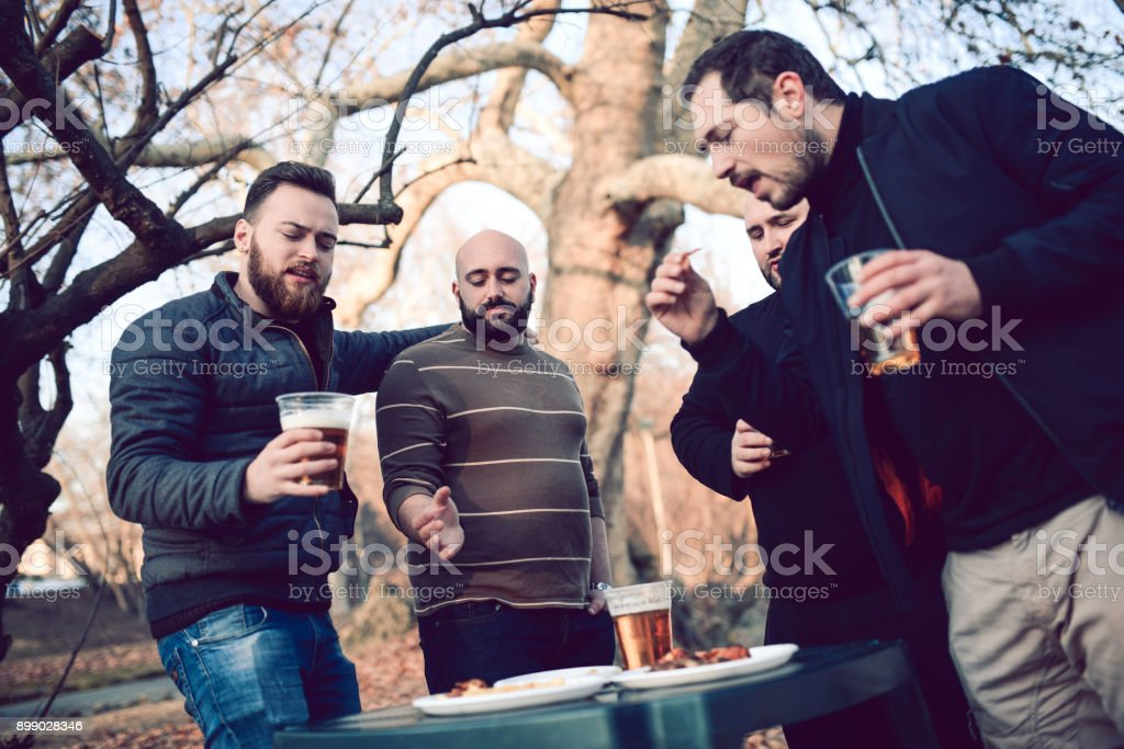 Group of Friends Talk and Have Great Time on Picnic