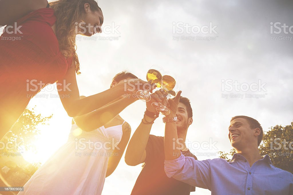 Group of friends toasting at birthday party royalty-free stock photo