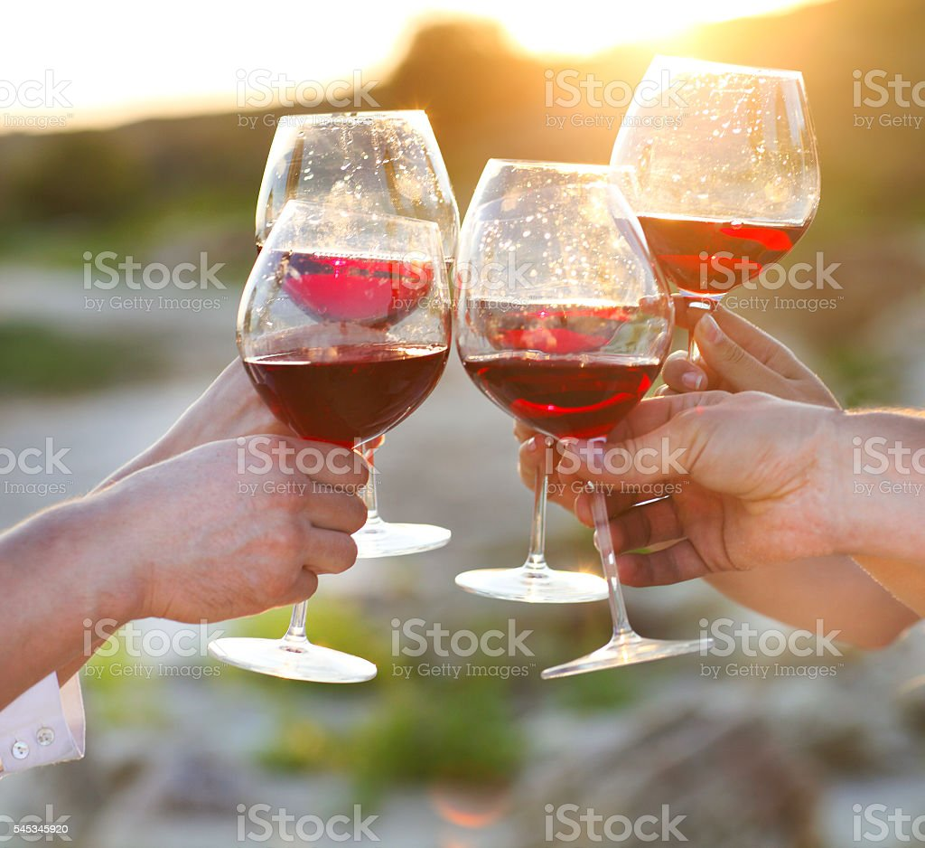 Group of friends toasting wine at a relax party celebration stock photo