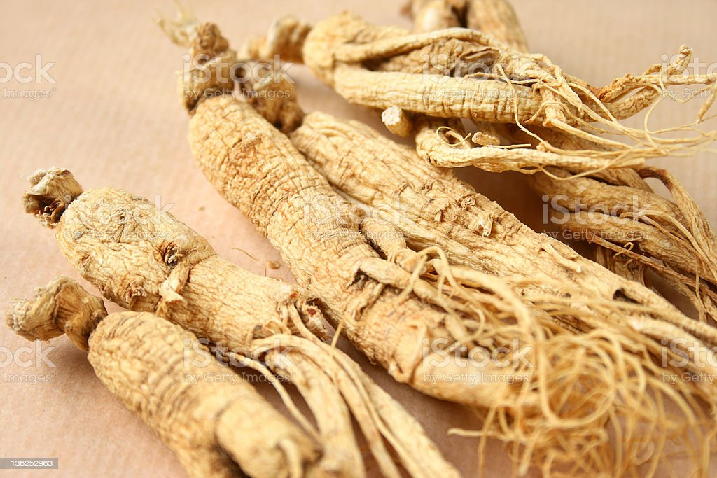 Group of ginseng root stock photo