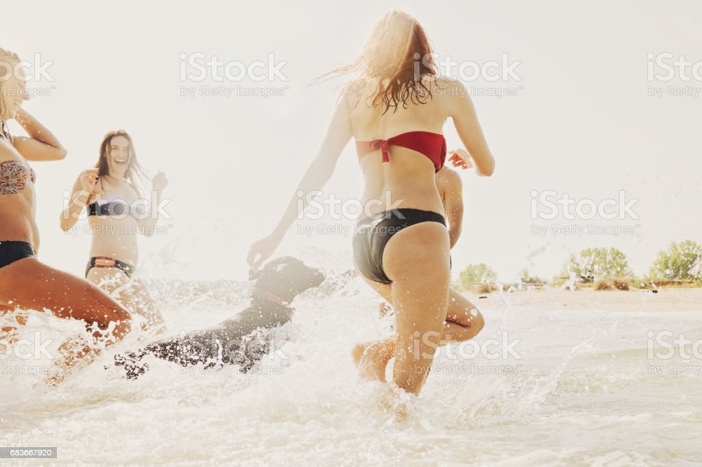 Group of girls and a dog playing in the sea stock photo