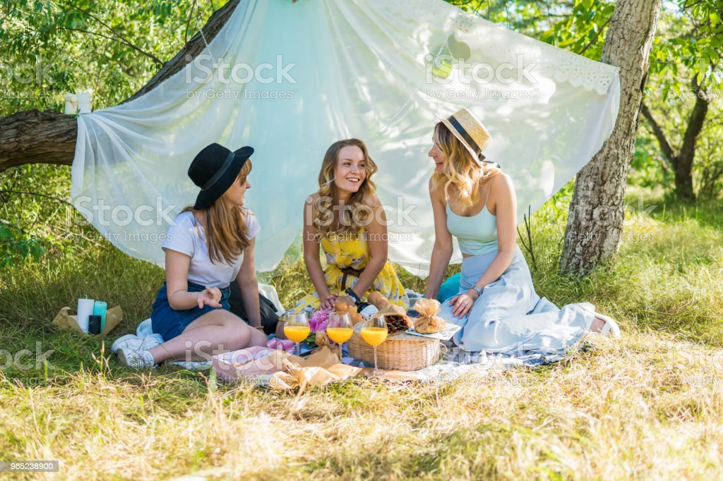 Group of girls friends making picnic outdoor royalty-free stock photo