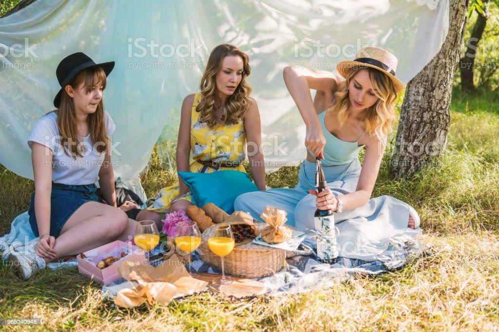 Group of girls friends making picnic outdoor zbiór zdjęć royalty-free